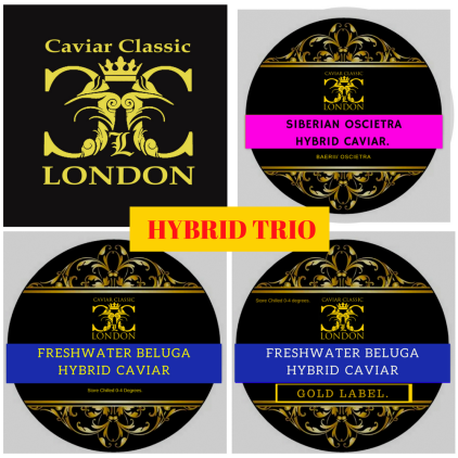 Hybrid trio of caviar
