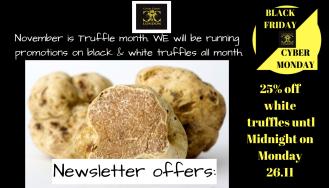 BFCM White truffle